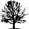 Baumkletterausrüstung für professionelle Baumpflege