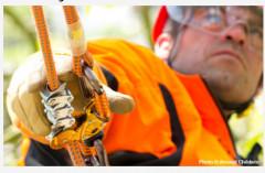 Petzl Zigzag Abseilgerät für Baumpfleger (mechanischer Prusik 11,5-13mm)